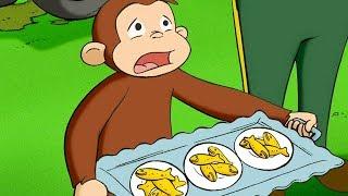 Georges le Petit Singe 🐵Quintuplés Surprise 🐵Saison 1  🐵Dessin Animé 🐵Animation Pour Enfants