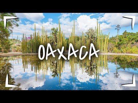 Download OAXACA ► QUE HACER, VISITAR y COMER en 2 - 3 días  🔴 TOUR GASTRONÓMICO MUY COMPLETO 🐖
