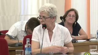 Pleno Agosto 2014   Medina del Campo