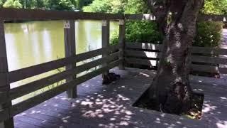 香川県高松市  仏生山公園