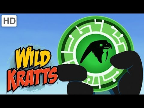 Wild Kratts - Falcon Power! | Kids Videos