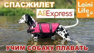 Учим собаку плавать | Спасжилет с AliExpress