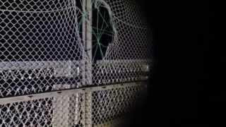 【視聴大丈夫】宮ヶ瀬「虹の大橋」-自殺多発地帯【自殺防止フェンス】
