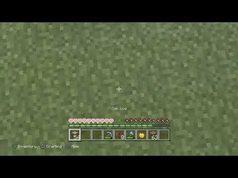 Minecraft #4 building house
