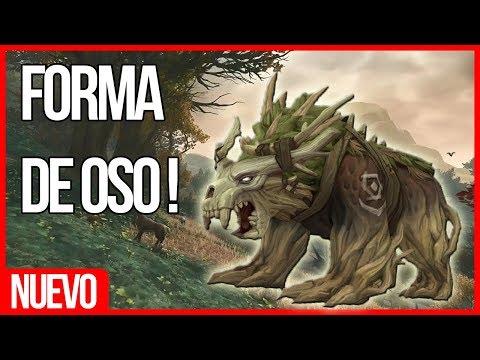 FORMA DE OSO - DRUIDA KULTIRAS