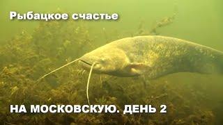 На Московскую День 2 Рыбацкое счастье