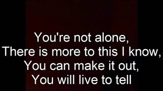 You re Not Alone by Saosin karaoke COVER
