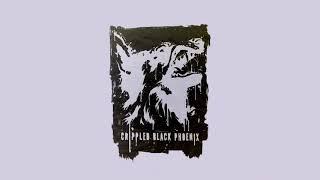 Crippled Black Phoenix - We Forgotten Who We Are A432Hz