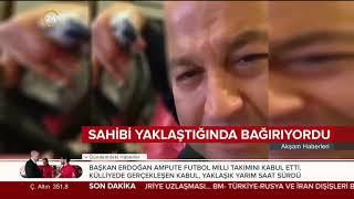 """Murat Özdemir papağana dakikalarca eziyet edip """"Acun Baba"""" dedirtmeye çalıştı!"""