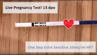 Test 13 Dpo