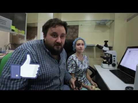Клиника по лечению бесплодия профессора Здановского