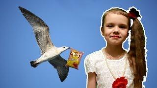 ПростоЕва #22 -  чайка воришка (детская пародия +100500) приколы