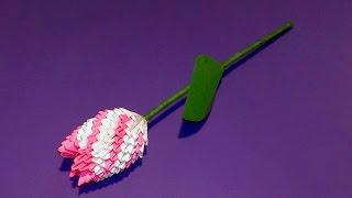 Модульное оригами тюльпан (цветок) мк(Модульное оригами тюльпан (цветок) мк или Что подарить маме на 8 марта? пошаговое изготовление (мастер класс)..., 2015-02-23T07:59:58.000Z)