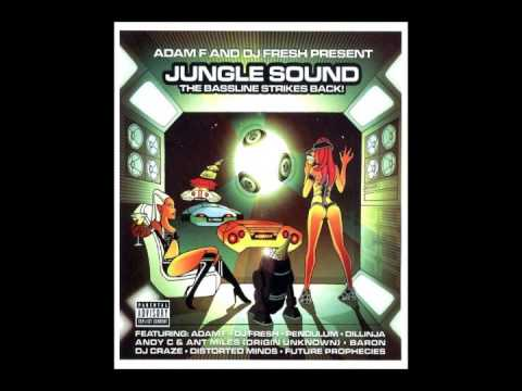 Adam F & DJ Fresh ‎– Jungle Sound The Bassline Strikes Back! (2004)