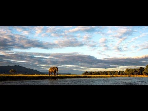 Ruckomechi Camp | Mana Pools National Park | Zimbabwe