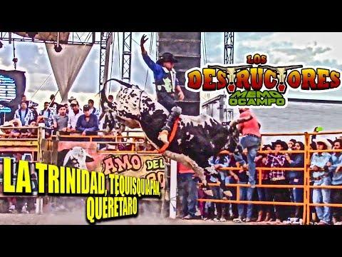 ¡¡¡SIMPLEMENTE LA N.1!!! LOS DESTRUCTORES DE MEMO OCAMPO EN LA TRINIDAD, TEQUISQUIAPAN, QRO. 2017