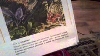 Библейский Урок #1 Адам и Ева