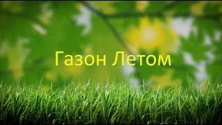 видео Уход за газоном