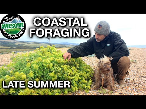 Coastal Foraging For Beginners - LATE SUMMER | TAOutdoors