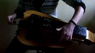 Eluveitie - Neverland (hurdy gurdy cover)