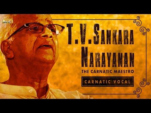 Best Of T. V. Sankaranarayanan | Carnatic Classical | Tamil Songs | Carnatic Vocal