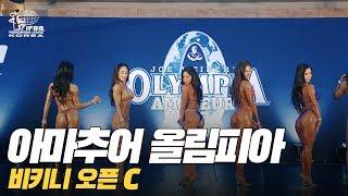 [IFBB PRO Korea 코리아] 2019 아마추어…