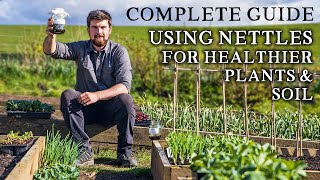 Amazing Way to Use NETTLES to Improve Seedling Success
