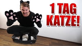 1 Tag lang Katze sein! | Andre vs. Cengiz