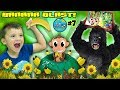 Shawn's Circle: MONKEY STOLE OUR GAME  (#7)   DOH MUCH FUN