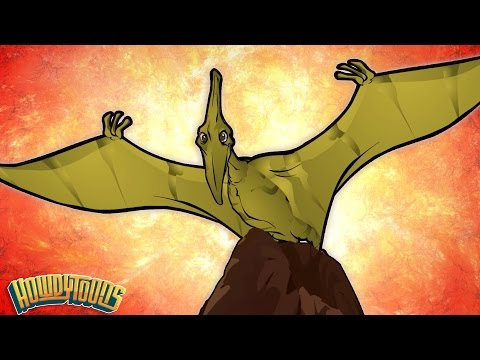 Best Dino Songs #2 | Pterodactyl Song and More Dinosaur Songs from Dinostory by Howdytoons
