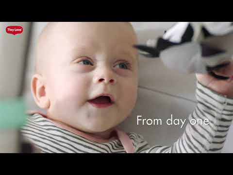 Tiny Love's Magical Tales™ Gymini® - Developing Baby from Day One!