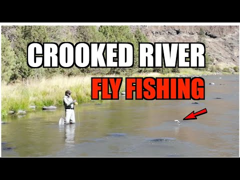 Crooked River Fly Fishing Tutorial. TURN ON CC FOR TUTORIAL AND TIPS ON BEST FLIES. See Description.