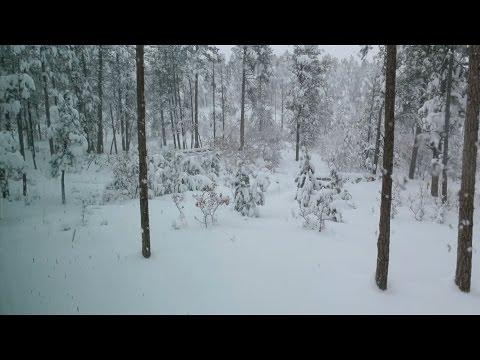 COLORADO SPRING SNOW - Vlog #580