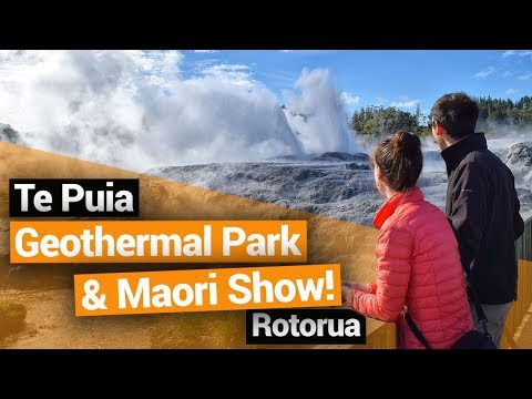 Te Puia Maori Show & Geothermal Park in Rotorua – New Zealand's Biggest Gap Year