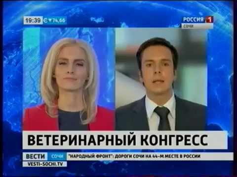 ГК ВИК на МВК 2016 в г Сочи