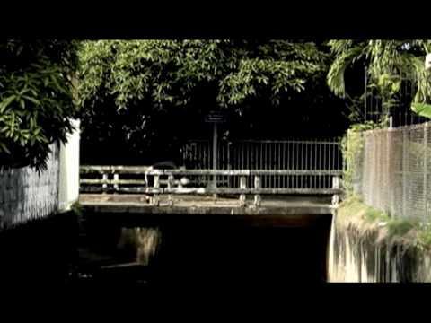 Tego Calderon - Quitarte 'To [feat. Randy] (Official Music Video)
