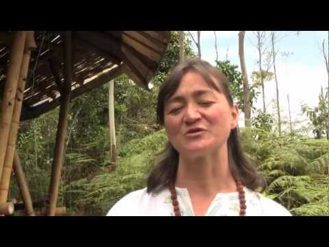 CASA Colombia: Tejiendo Redes Sustentables // Weaving Sustainable Networks