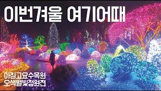 서울근교 데이트, 나들이 딱! 겨울밤 로맨틱 페스티벌~…