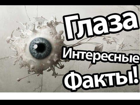 Интересные Факты о Глазах!