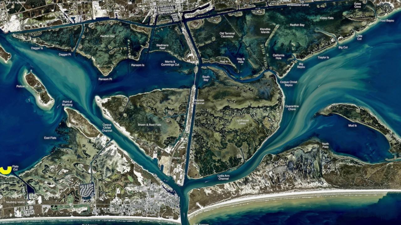 Texas fishing tips fishing report march 2017 port aransas for Port aransas fishing report