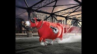 бешеный бык атакует