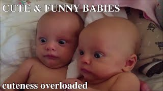 Funny Baby Videos | Cute baby videos | Fun and Fails Baby | Try Not To Laugh | Cutest Babies | Baby
