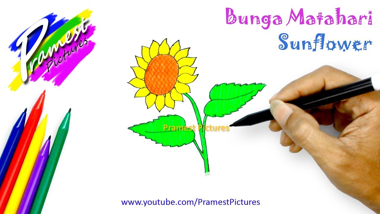 Gambar Taman Bunga Animasi How To Draw Sunflower Flower Coloring Pages For Kids