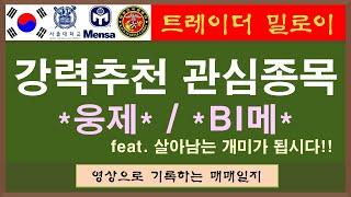 강력추천 관심종목 / SK아이이테크놀로지 대웅제약 KB…