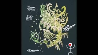 Fungus Funk & Para Halu - Spirit Medicine (Spacequake remix)