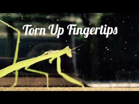 Torn Up Fingertips - Sean Lawlor