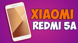 ЧЕСТНЫЙ ОБЗОР Xiaomi Redmi 5A