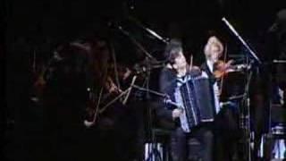 Johannes Brahms - Symphony №3 - Poco Allegretto