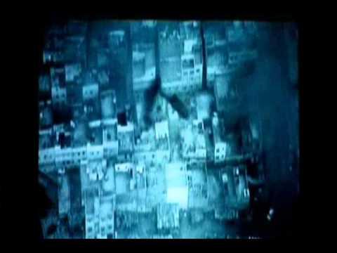Black Hawk Down - Wolcott's bird