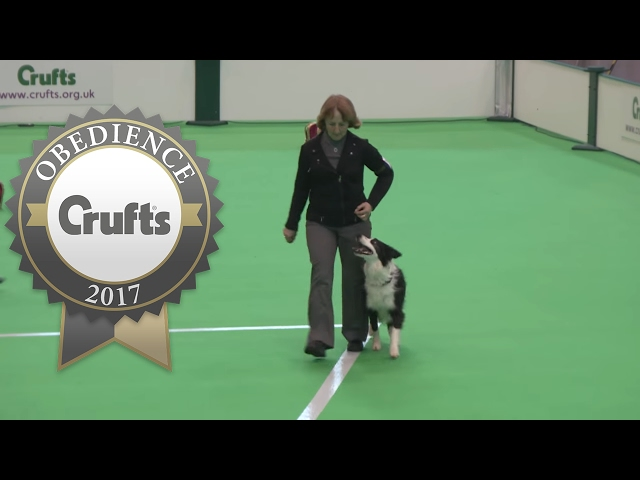 Obedience Championship - Bitches - Part 4 | Crufts 2017